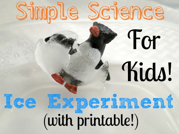 ... easy to prepare and is a great way to get kids excited about science